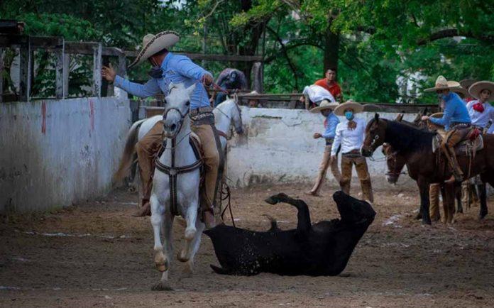 Palenque vive la fiesta del Circuito Ruta del Café en tercera fase